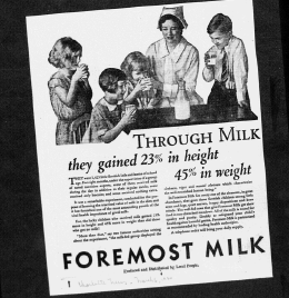 "Fig. 8. ""Through Milk they gained 23% in height, 45% in weight"". Publicité pour Foremost Milk. 1929-1930 J. Walter Thompson Company. 35mm Microfilm Proofs, 1906-1960 and undated. Reel 9."