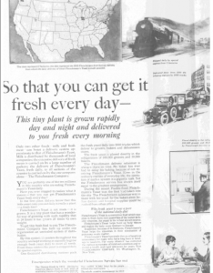 "Fig.6. ""So that you can get it fresh everyday"". Publicité pour Fleischmann's Yeast, source inconnue, v. 1921. Source : J. Walter Thompson Company. 35mm Microfilm Proofs, 1906-1960 and undated, Reel 26. L'obsession de la fraîcheur témoigne des préoccupations nouvelles autour de l'hygiène. La campagne pour Foremost Milk va dans le même sens lorsqu'elle met l'accent sur la pasteurisation du lait."